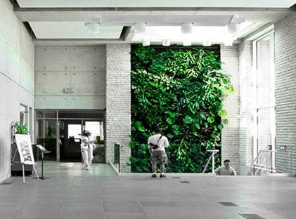 Pasto sint tico plantas artificiales y muros verdes - Muros sinteticos decorativos ...